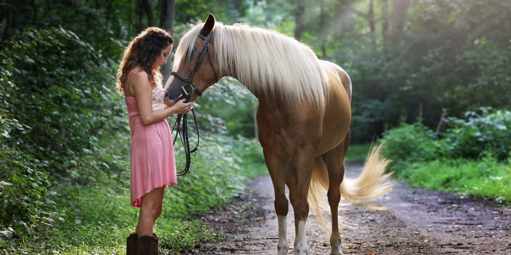 8 Ways To Quickly Minimize Your Steed's Anxiety